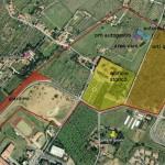più verde nel quartiere: una proposta del Centro Sociale